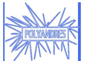 Polyandres (post-folk / Lille)
